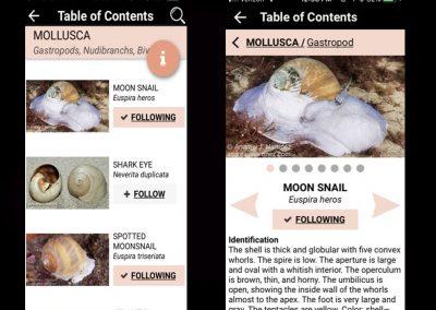 MLNA App Screen 2