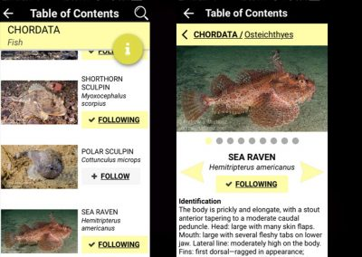 MLNA App Screen 3